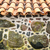 tiled roof and wall decorated with stones stock photo © kyolshin