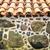 parede · grande · pedras · textura · construção · natureza - foto stock © kyolshin