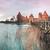 castelo · Lituânia · famoso · Vilnius · céu · natureza - foto stock © kyolshin