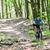 man on mountain bike bicycle stock photo © kzenon