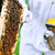 dohányos · méhek · keret · dolgozik · női · méz - stock fotó © kzenon