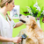 woman getting golden retriever fur care at dog parlour stock photo © kzenon