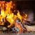 kandalló · részlet · fa · égő · fény · éjszaka - stock fotó © kzenon