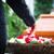 woman on funeral putting rose petals on coffin stock photo © kzenon