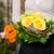 femenino · florista · vivero · plantas - foto stock © Kzenon