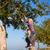 pai · jogar · filha · apple · tree · jogar · criança - foto stock © kzenon