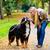 woman and dog at retrieving stick game stock photo © kzenon