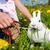 kız · easter · bunny · çayır · yumurta · çiçekler · aile - stok fotoğraf © kzenon