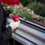 çelenk · dekore · edilmiş · Noel · yaprak · arka · plan · kırmızı - stok fotoğraf © kzenon