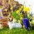 kinderen · bunny · weide · voorjaar · voorgrond - stockfoto © kzenon