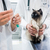 cat looking at vaccine injection being prepared by veterinarian stock photo © kzenon