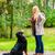 Бернский · зенненхунд · стандартный · парка · красоту · черный · смешные - Сток-фото © kzenon