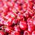 cerezas · frutas · verano · cereza · frescos · saludable - foto stock © Laks