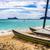 deniz · kaplumbağa · su · caribbean · plaj · güneş - stok fotoğraf © lameeks
