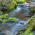 Mossy Rock Stream stock photo © LAMeeks