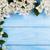 trópusi · virágok · sarok · keret · kép · illusztráció - stock fotó © lana_m