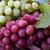 winogron · winogron · nasion · wina · charakter - zdjęcia stock © lana_m