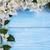 tropicales · flores · esquina · frontera · imagen · ilustración - foto stock © lana_m