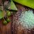 fürdő · egészségügy · kézzel · készített · olívaolaj · törölközők · fa · deszka - stock fotó © Lana_M