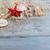 frontière · cadre · été · plage · shell · starfish - photo stock © lana_m