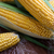 fresh corn on cobs stock photo © lana_m