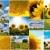 napraforgók · kollázs · néhány · színes · napraforgó · képek - stock fotó © ldambies