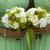 verde · ramo · de · la · boda · boda · mujer · manos - foto stock © leeavison