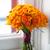 оранжевый · закрывается · роз · подоконник · цветок - Сток-фото © leeavison