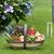 frissen · zöldségek · otthon · megnőtt · fából · készült · kosár - stock fotó © leeavison