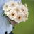 virágok · absztrakt · gyönyörű · piros · természet · háttér - stock fotó © leeavison