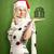 mujer · espera · Navidad · sombrero · mano · sonrisa - foto stock © leedsn