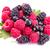 fresh berries raspberries blackcurrants stock photo © len44ik