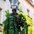 giardino · solare · lampada · terra · primo · piano · shot - foto d'archivio © len44ik