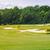 golf · coche · verano · club · hierba · deporte - foto stock © len44ik