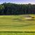 mükemmel · dalgalı · yeşil · zemin · golf · sahası · güzel - stok fotoğraf © len44ik