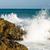 ocean · krajobraz · zachód · słońca · duży · skał · kamienie - zdjęcia stock © len44ik