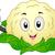 cavolfiore · mascotte · illustrazione · alimentare · vegetali - foto d'archivio © lenm