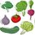 dijital · vektör · brokoli · örnek · ayrıntılı - stok fotoğraf © lenm