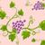 üzüm · beyaz · doku · doğa · yaprak · yeşil - stok fotoğraf © lenm