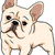 cute · frans · bulldog · weinig · bezorgd · vergadering - stockfoto © lenm