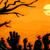 cementerio · noche · halloween · horror · graves · miedo - foto stock © lenm