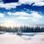winter · bos · landschap · panorama · panoramisch · sneeuwval - stockfoto © leonidtit