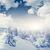 inverno · fantástico · paisagem · Ucrânia · europa · beleza - foto stock © Leonidtit