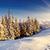зима · красивой · Панорама · снега · покрытый · деревья - Сток-фото © Leonidtit