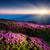 nuvem · blue · sky · sol · backlight · luz · halo - foto stock © leonidtit