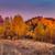 bouleau · forêt · matin · soleil · printemps · route - photo stock © leonidtit