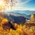 majestueus · kleurrijk · bos · bomen · zonnige · berg - stockfoto © Leonidtit