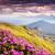 romantique · rose · montagne · nuages · coucher · du · soleil - photo stock © leonidtit