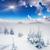 kış · fantastik · manzara · dramatik · gökyüzü · Ukrayna - stok fotoğraf © Leonidtit