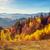 fenséges · ősz · tájkép · fák · napos · hegy - stock fotó © Leonidtit